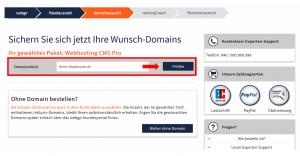 Domain für Blog überprüfen und auswählen